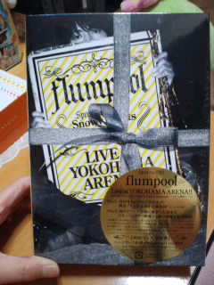 『flumpool Live at YOKOHAMA ARENA Special Live 2010 Snowy Nights Serenade~心までも繋ぎたい~』